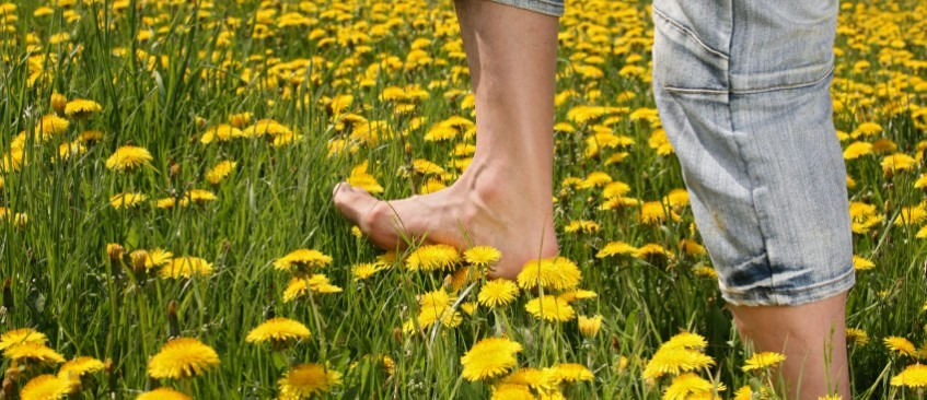 Feet walking in the grass